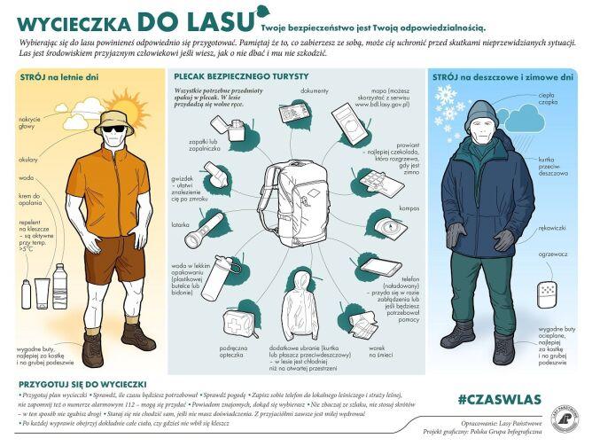 Jak przygotować się do wycieczki do lasu (Lasy Państwowe)