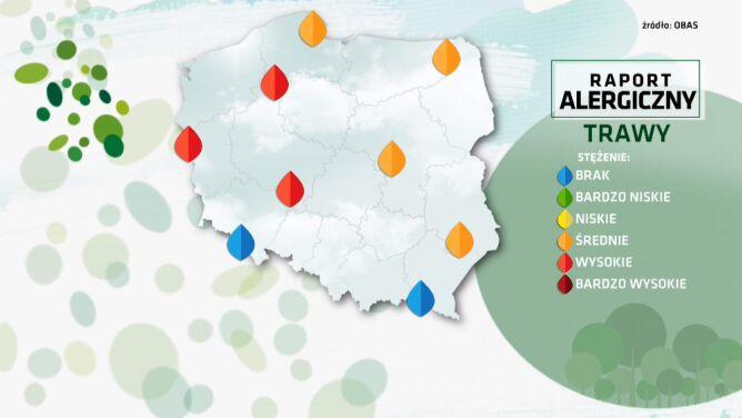 Raport alergiczny. <br />Są regiony, gdzie mocno pylą trawy