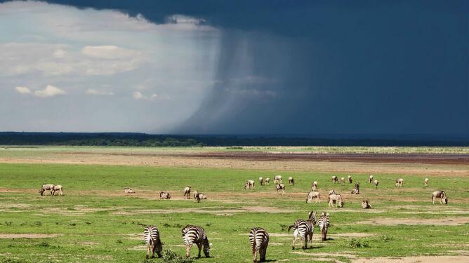 Afryka odczuwa zmiany klimatu, wywołane przez gazy cieplarniane sprzed 10 tysięcy lat